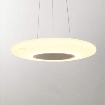Đèn thả LED trang trí hiện đại D3040