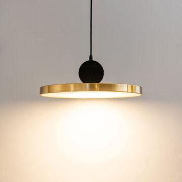 Đèn thả LED trang trí hiện đại D2069